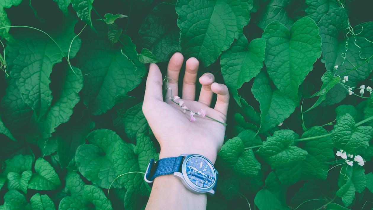 hand before osteoarthritis