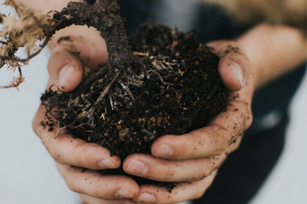 someone holding a handful of soil